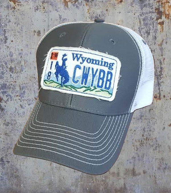 hat-license-grey-jpg
